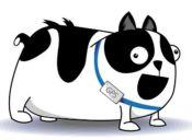 Conoce ePet, el sistema chileno que evita que tu perro se pierda