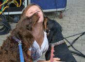 Los lamidos de los perros son beneficiosos para la salud