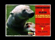 Activistas convocan velatón por animales del zoológico metropolitano y su cierre definitivo
