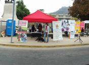 En gran operativo se vacunó y desparasitó a 200 perros abandonados en el centro de Santiago