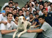 Perro llamado Quaker es un Alumno más en un Colegio de Argentina