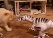 [Video] Gatos son registrados peleando con dinosaurios