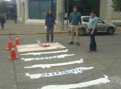 """En Aysén el Paso de Cebra será """"Paso del Perro"""" para Promover Tenencia Responsable"""