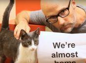 Músico Moby dona el 100% de las ganancias de su restaurant vegano a causas animalistas