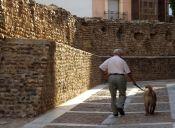 Las Mascotas y los Adultos Mayores: Beneficio mutuo
