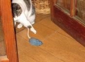 Tutorial: Ratón de juguete para tus gatos, barato y fácil