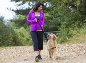 3 motivos para tener un perro y terminar tu pereza