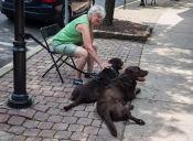 Ancianos y animales logran un vínculo único