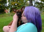 ¿Es peligroso besar a mis mascotas en la boca?
