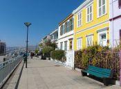 Los mejores lugares para pasear a tu perro en Valparaíso