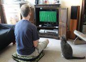 Los 5 mejores juegos relacionados con animales