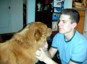 ¡Atención dog lovers! estudios demuestran que adoptar perros ayuda a mejorar el ambiente familiar