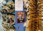 Este es el museo con la colección más grande de souvenirs del tráfico de fauna silvestre