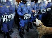 Grecia: Perrito símbolo de protestas falleció por alta exposición a productos químicos