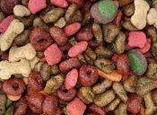 Vitaminas y minerales esenciales para perros