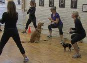 Los perros, grandes aliados para bajar de peso