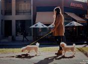 Niñeros de mascotas: Una tendencia que llegó para quedarse