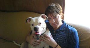 Los perros confían más en sus amos que en otros de su especie