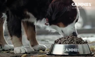 Tu perro puede comer sano y sabroso con Cannes