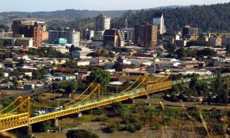 Los mejores lugares para pasear a tu perro en Temuco