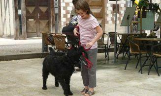 5 razas de perros para niños autistas