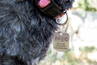 Info ID, la medalla para mascotas con código QR creada por chilenos