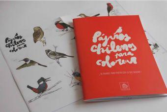 Los niños podrán conocer más de las aves chilenas gracias a este libro
