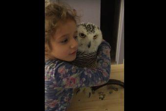 Buhíta Mañosa Se Entrega a los Mimos de una Niña (video)