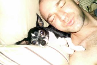 Si tu perro te pone la cola en la cara, es porque está seguro