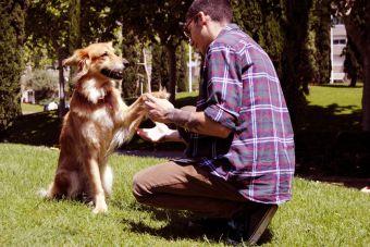 7 formas en que tu mascota te hace mejor persona