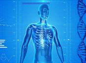 PSU Biología: Receptores Sensitivos