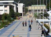 Universidad de Concepción triplicará admisión mediante PACE para el próximo año