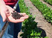 Puntajes de corte: Ingeniería Agropecuaria 2015