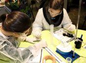Universidades que imparten Biotecnología