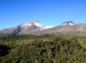 Recorriendo Chile: Neltume, Región de los Ríos