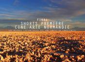 Cortometrajes Short Premiere en Cine Arte Normandie