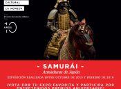 Exhibición de Artes Marciales en Centro Cultural Palacio La Moneda