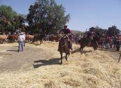 Fiesta Costumbrista de Barraza
