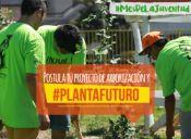 #PlantaFuturo: INJUV y CONAF financian proyectos de arborización comunitaria
