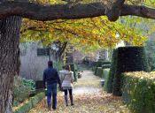 Maldito Amor: En otoño se usa novio