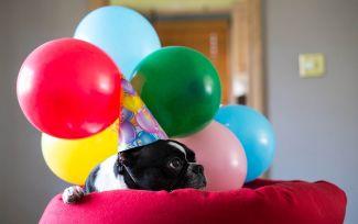 16 cosas que pasan en la víspera de tu cumpleaños