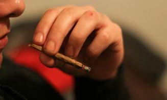Estudio relaciona el consumo de marihuana con mal desempeño en la etapa escolar