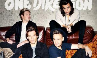 Liam y Louis de One Direction se pelearon… ¡en pleno concierto!