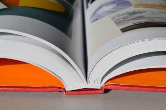 Mineduc habilita sitio para que conozcas los textos escolares gratuitos que recibirás