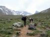 Mi Experiencia en Trekking: mi primer trekking