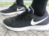 Review: Nike Pegasus 31