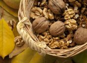 ¿Por qué los frutos secos no pueden faltar en la dieta de un deportista?