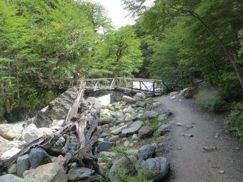 Mi Experiencia en Trekking: la W de Torres del Paine para principiantes