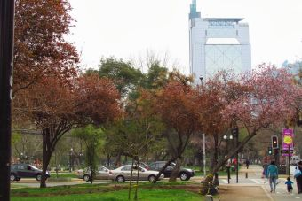 Lugares para correr: Mi ruta favorita es el Parque Bustamante