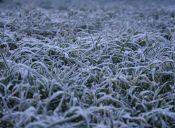 15 cosas que pasan en la universidad en los días de frío extremo